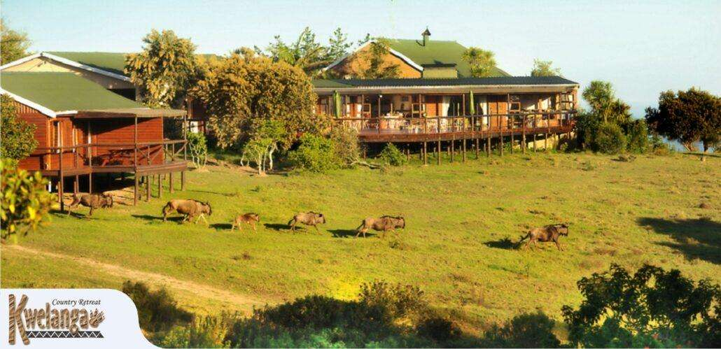 Kwelanga Bush Camp 10 Best Glamping Spots in the Western Cape
