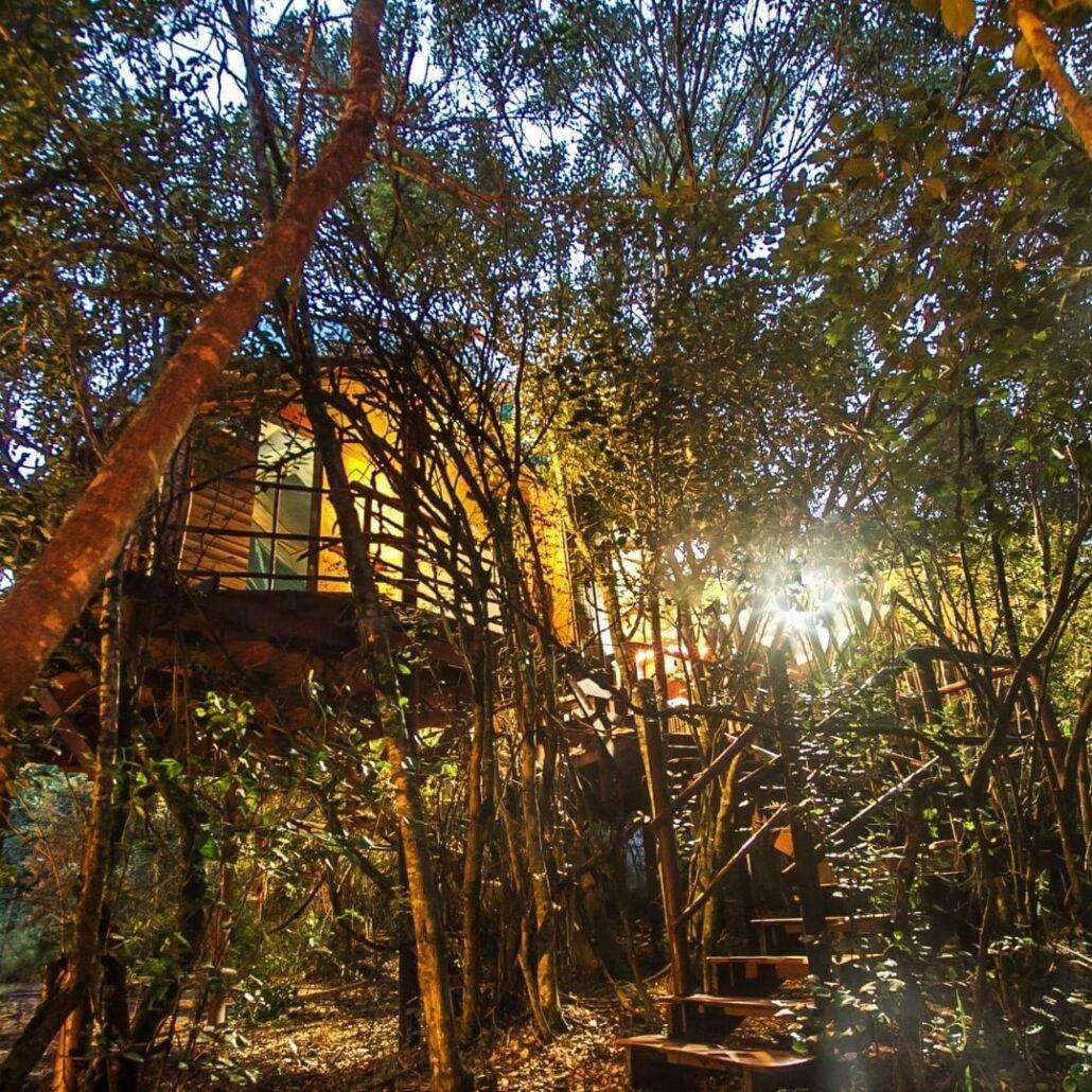 Teniqua 10 Best Glamping Spots in the Western Cape