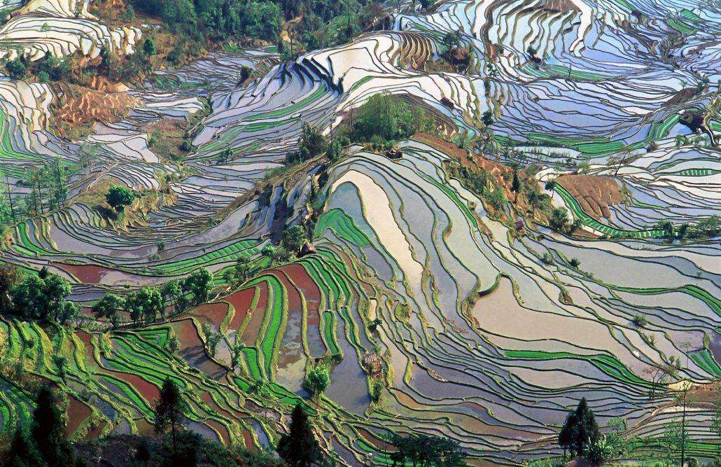 Yuanyang-County-in-Yunnan-China-1030x667 12 psychedelic looking places to visit