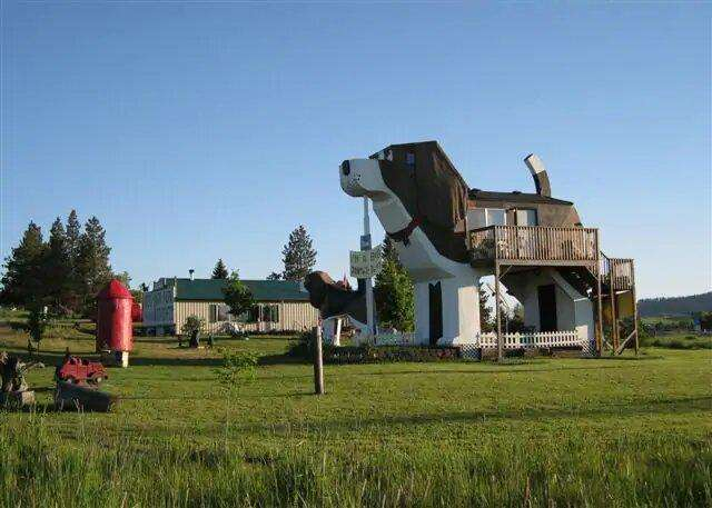beagle dog house
