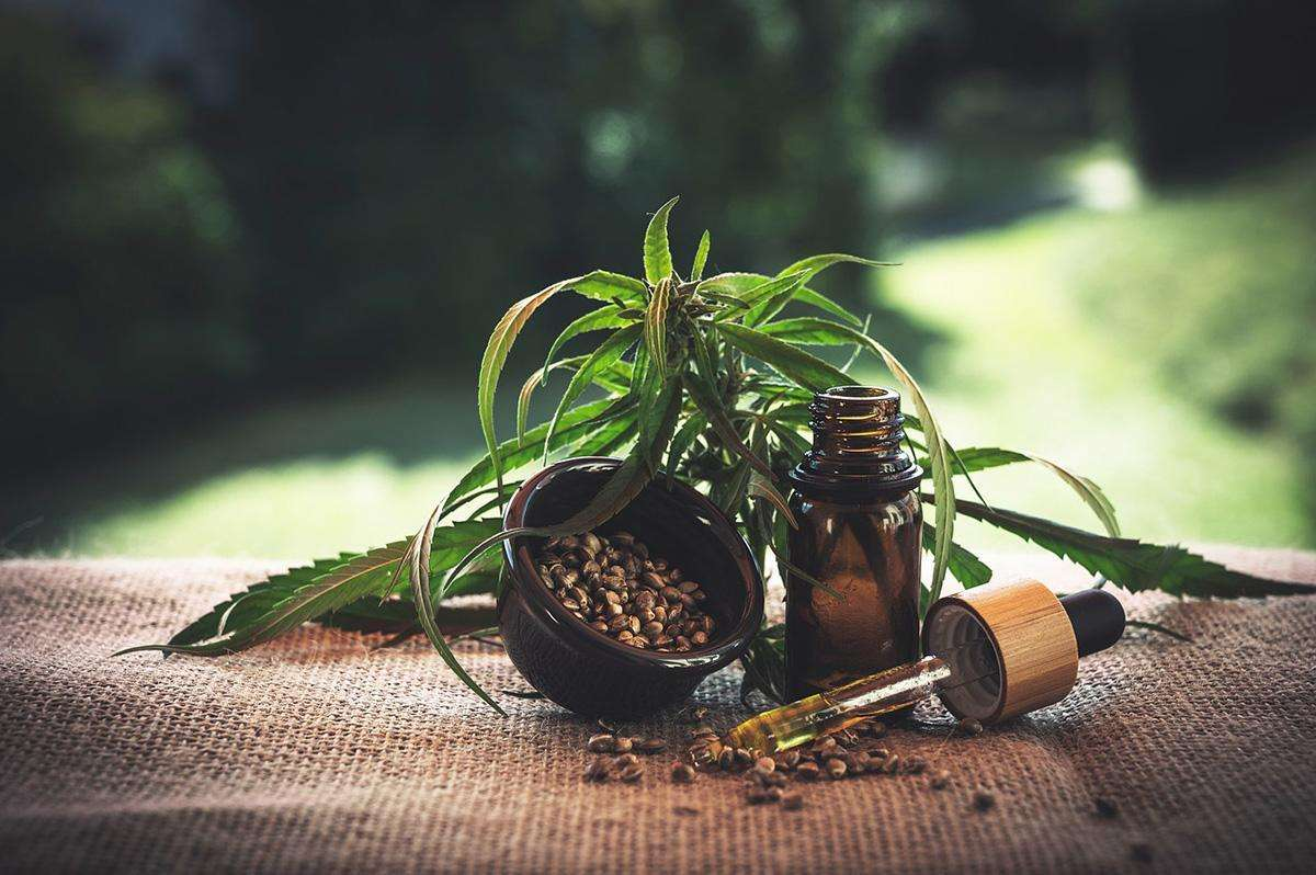 CBD Oil Types – Isolate, Broad-Spectrum & Full-Spectrum