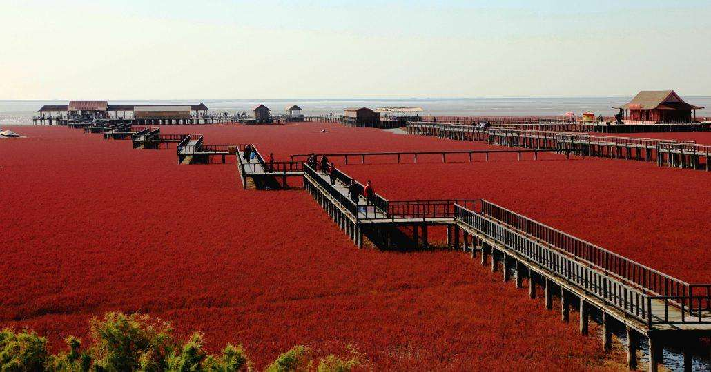 red-beach-china-1030x540 12 psychedelic looking places to visit